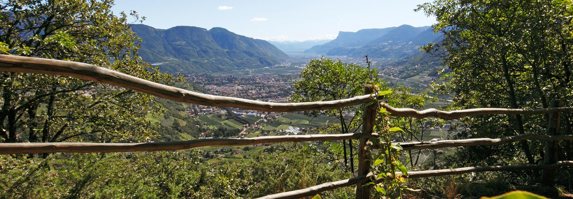 Experience South Tyrol in Merano and Environs